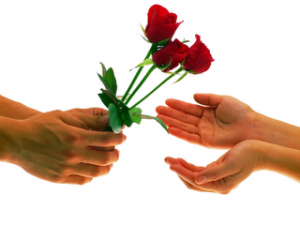 give roses