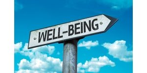 Image result for images of lawyer well-being
